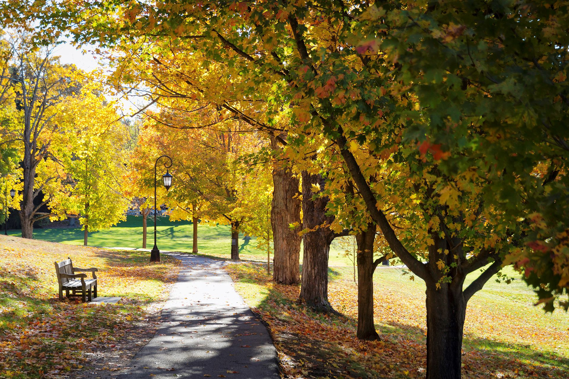 A path on the Wellesley College campus