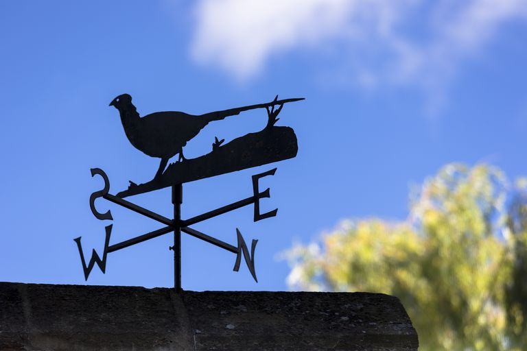 Decor And So Much More Weather Vanes And Wind Socks