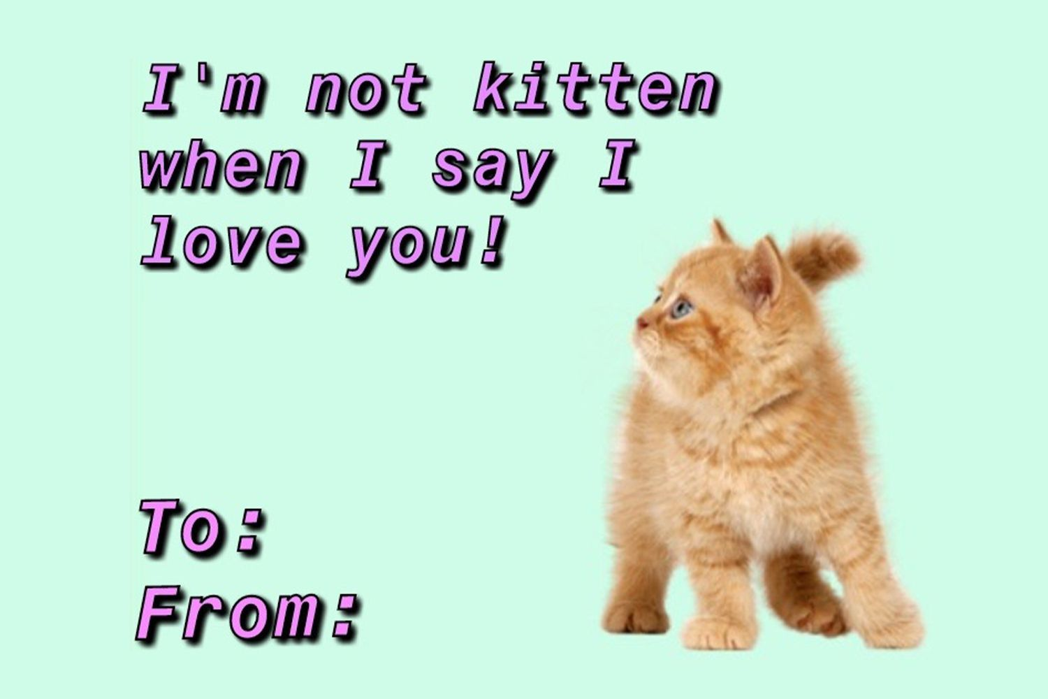 I'm not kitten when I say I love you
