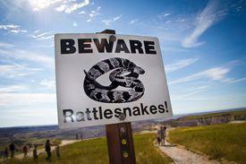Sign that says BEWARE Rattlesnakes! in desert