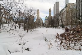 Central Park covered in snow during a winter storm in January 2016.