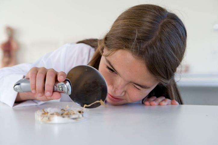 Girl (age 10-11) examines a sample using a magnifying glass