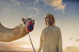 A masked camel and bedouin in the desert in Dubai