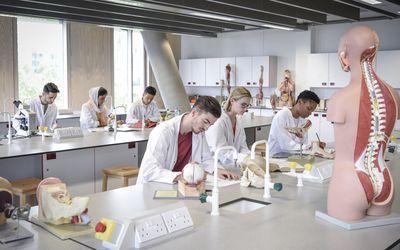 Best Pre-Med Schools for Future Doctors