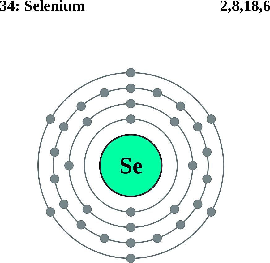 This diagram of a selenium atom shows the electron shell.
