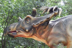 Kosmoceratops display outdoors.