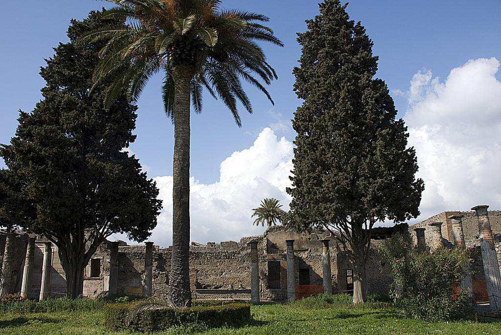 Large Peristyle, House of the Faun, Pompeii