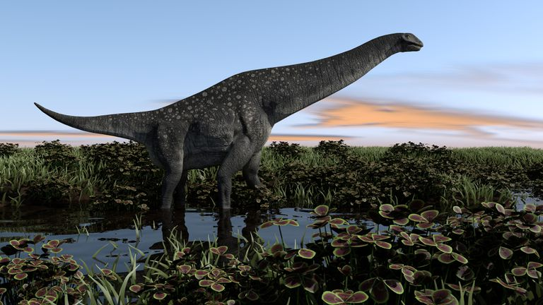 titanosaurus walking in swamp