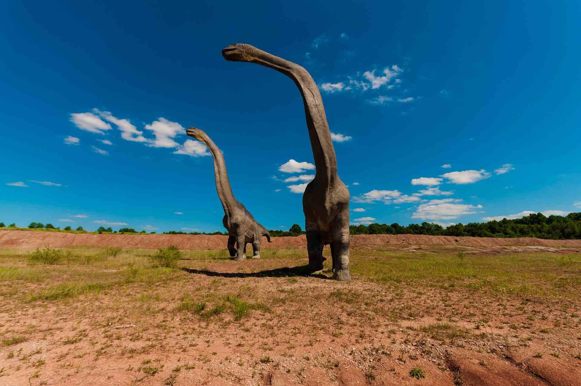 Artist rendering of long-necked dinosaurs walking across the plains.