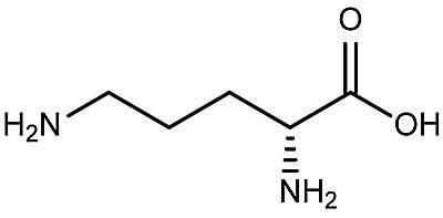 Esta es la estructura química de la D-ornitina.