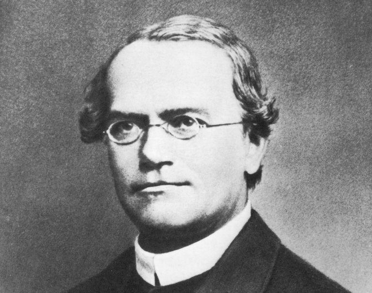 circa 1865: Johann Gregor Mendel (1822 - 1884). Austrian botanist
