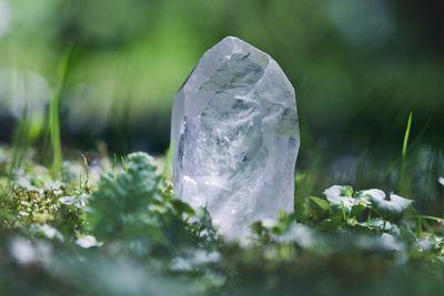 Grow Your Own Crystal Gemstones