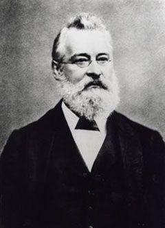John Alexander Reina Newlands (1838 - 1898)