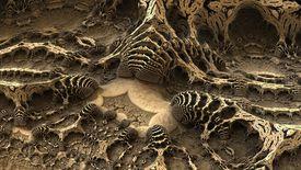 Old bones in a dirt landscape.