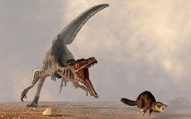 A Velociraptor Chasing a Rat Sized Mammal