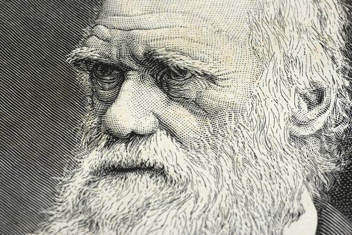 Illustration showing Charles Darwin