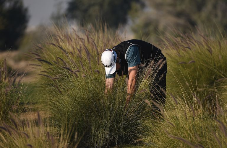 Peter Uihlein searches for his ball during the Qatar Masters tournament