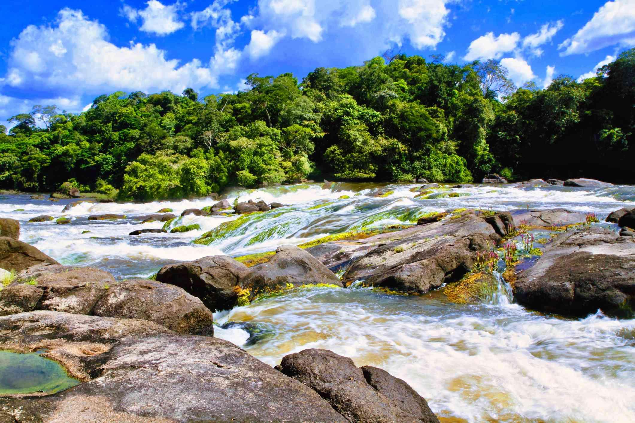 Paramaribo, Suriname river stream