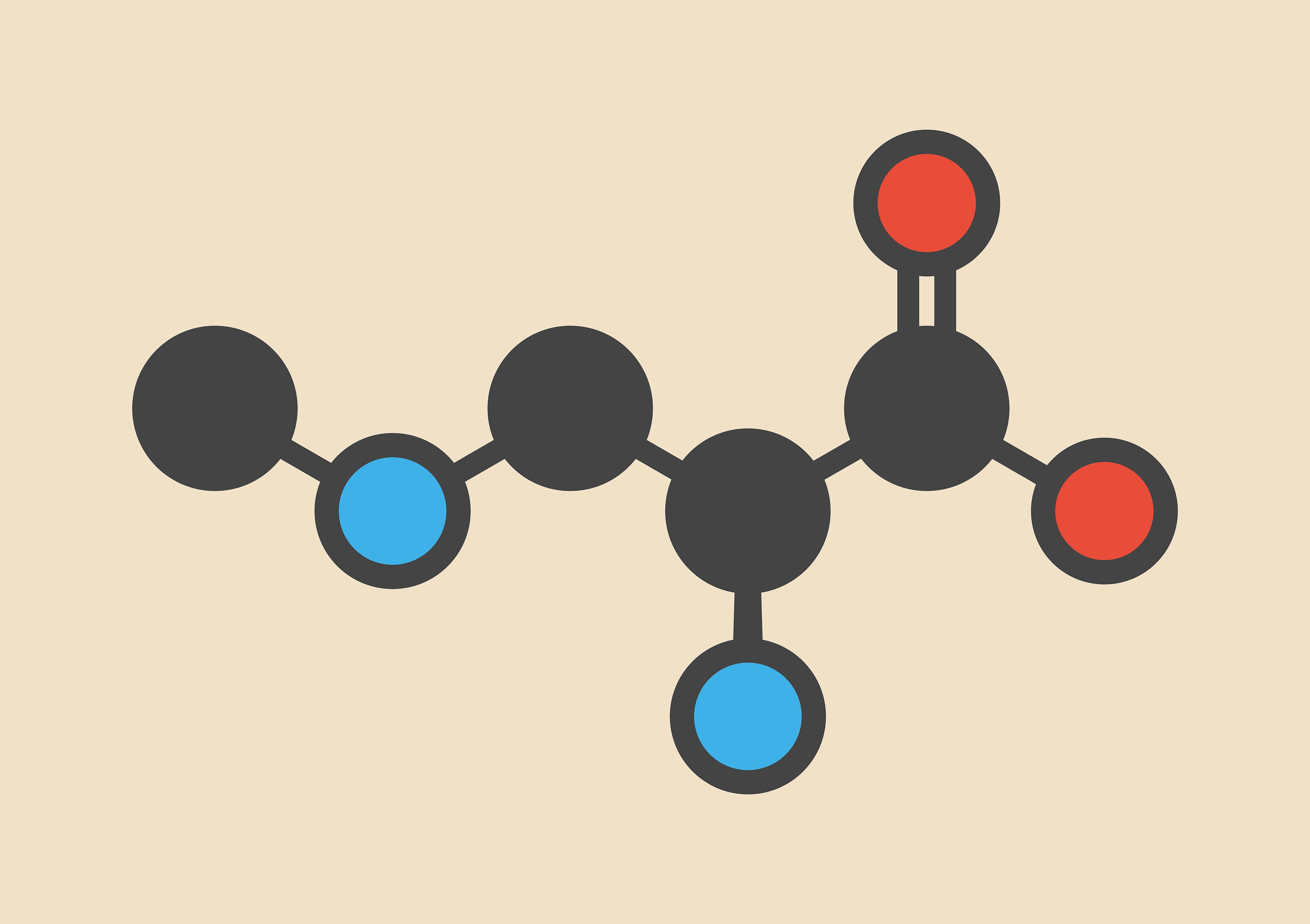 The beta-Methylamino-L-alanine molecule has the amino functional group.