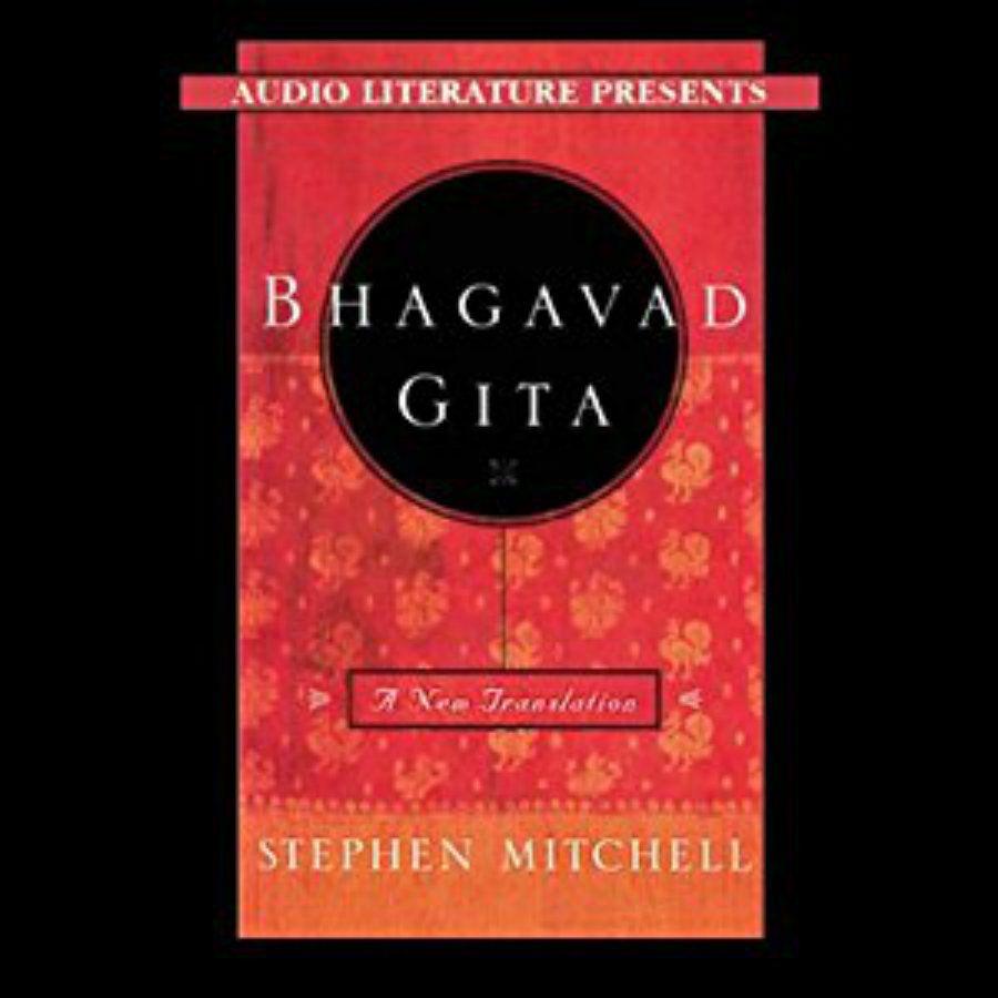 The 10 Best Books on the Bhagavad Gita of 2019