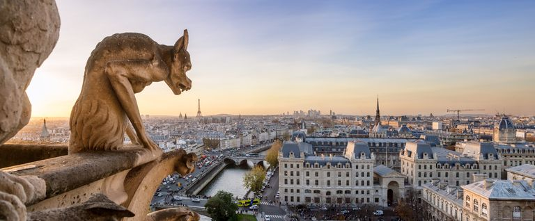 Panoramic of Notre Dame gargoyle and city of Paris