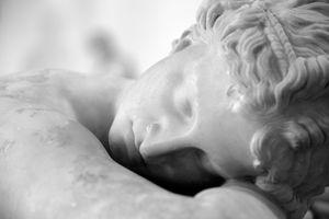 The Sleeping Hermaphrodite