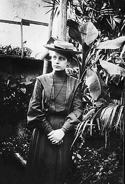 Lise Meitner studied radioactivity and nuclear physics.