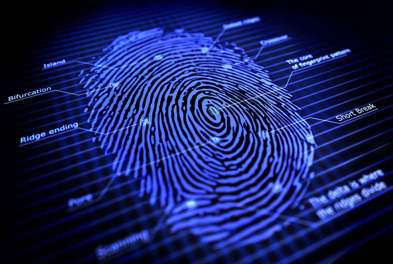 Dactylogram or Fingerprint