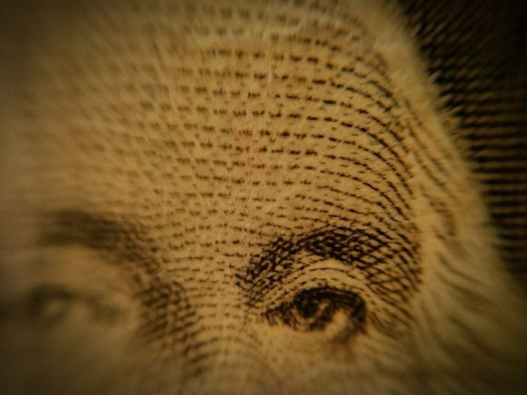 close up of George Washington's face on dollar bill