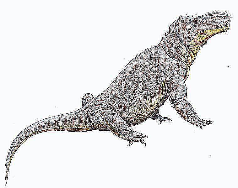 titanosuchus