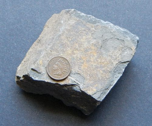 A block of gray shale, which usually splits into layers