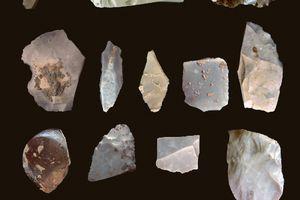 Artifacts from the Pre-Clovis Occupation at Debra L. Friedkin Site