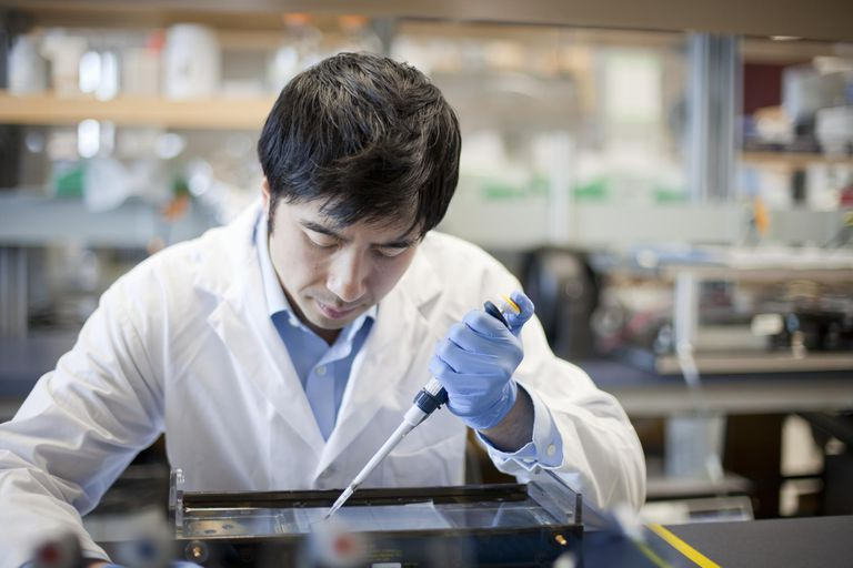 Laboratory technician studying Restriction Fragment Length Polymorphism
