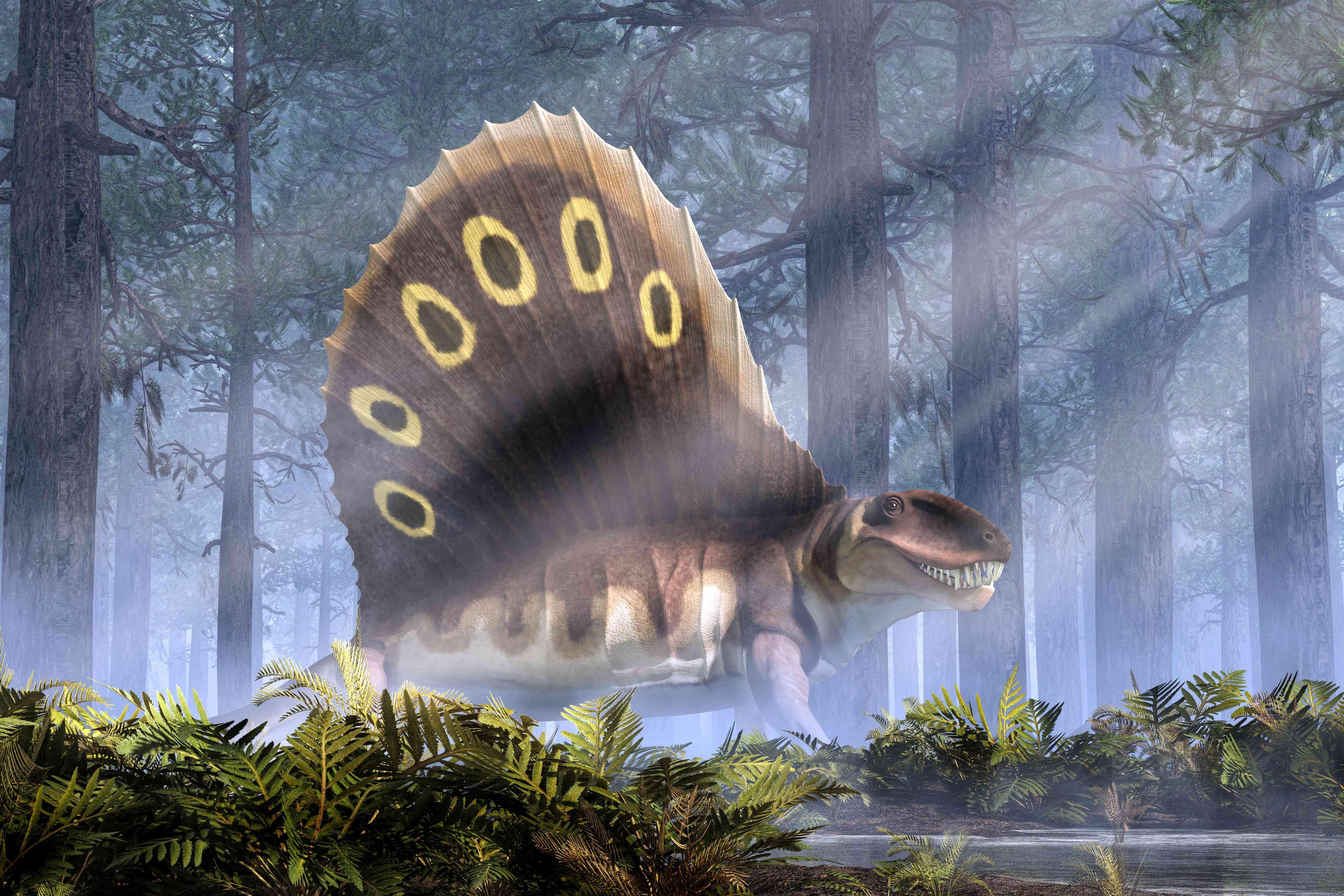 Dimetrodon walks throug a misty forest