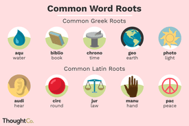 Illustrated depiction of common Greek and Latin word roots