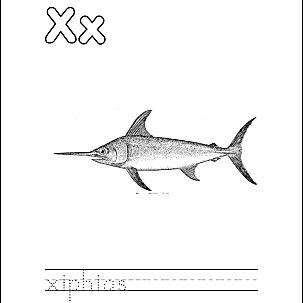 Letter X 2