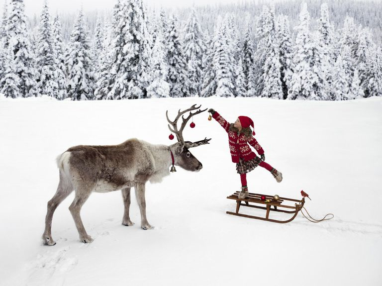 A little girl hangs ornaments on the antlers of a deer