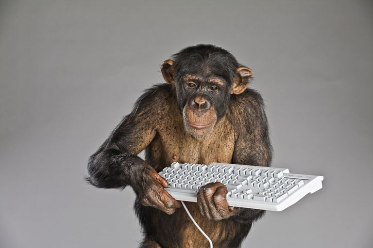 Chimpanzee holding keyboard.