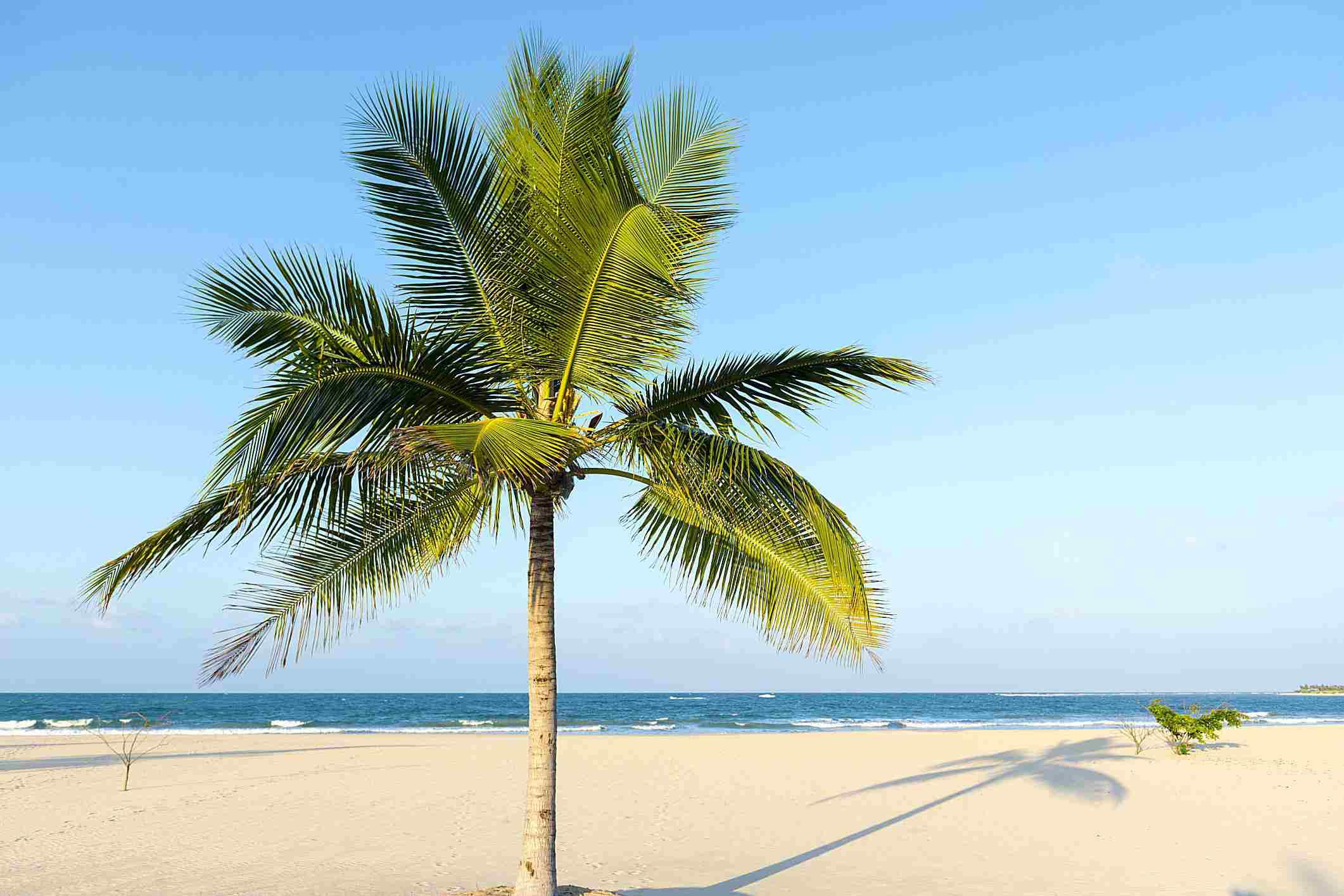 γαλάζιο ουρανό-παραλία