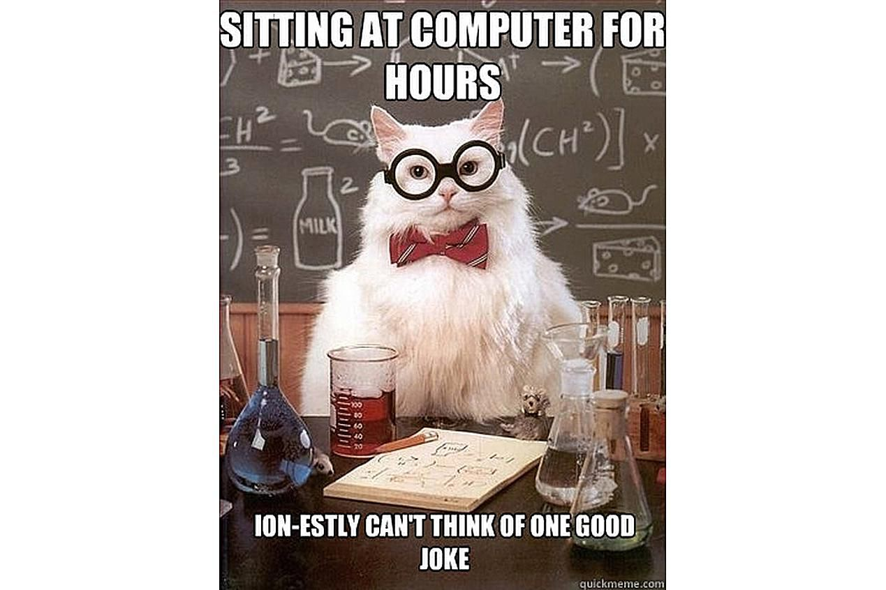 Chemistry Cat finally ran out of jokes.