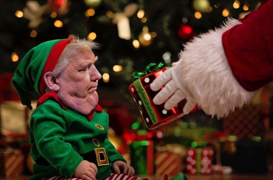 via reddit ushriekingmonkey and ubluemacaw - Reddit Christmas
