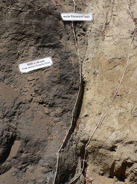 hayward fault line california