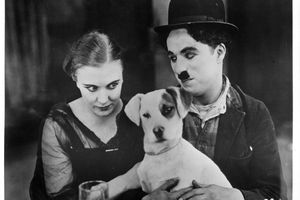 Charles Chaplin In 'A Dog's Life'
