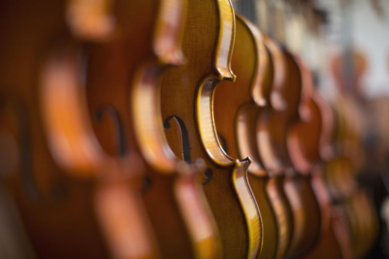 Violins in a row in a shop