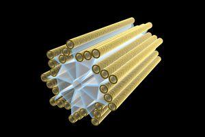 Conceptual image of centriole.