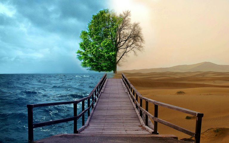 An image split into opposites: cold/hot; alive/dead; sea/desert