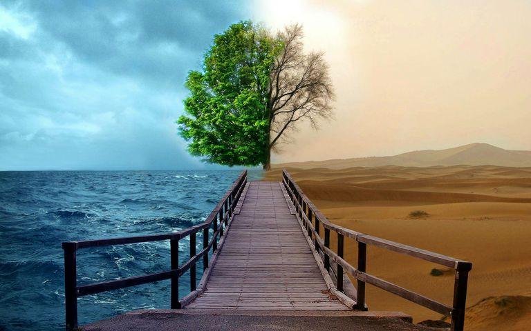 An image split into opposites: cold/hot; alive/dead; sea/desert