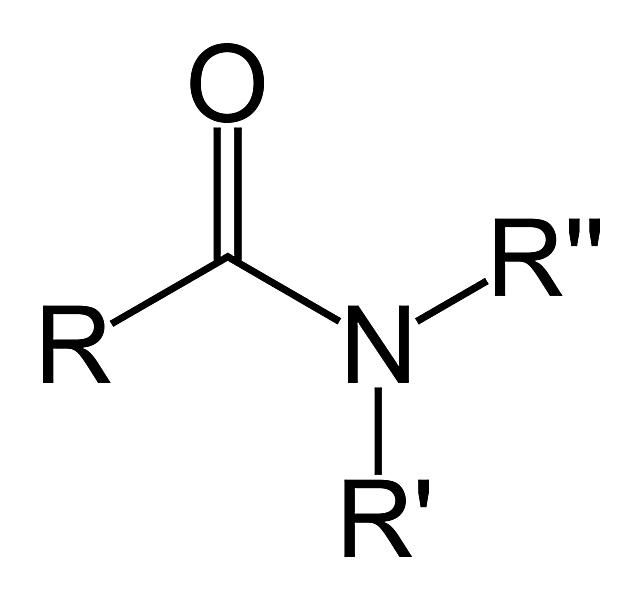 The carboxamide functional group is an amide.