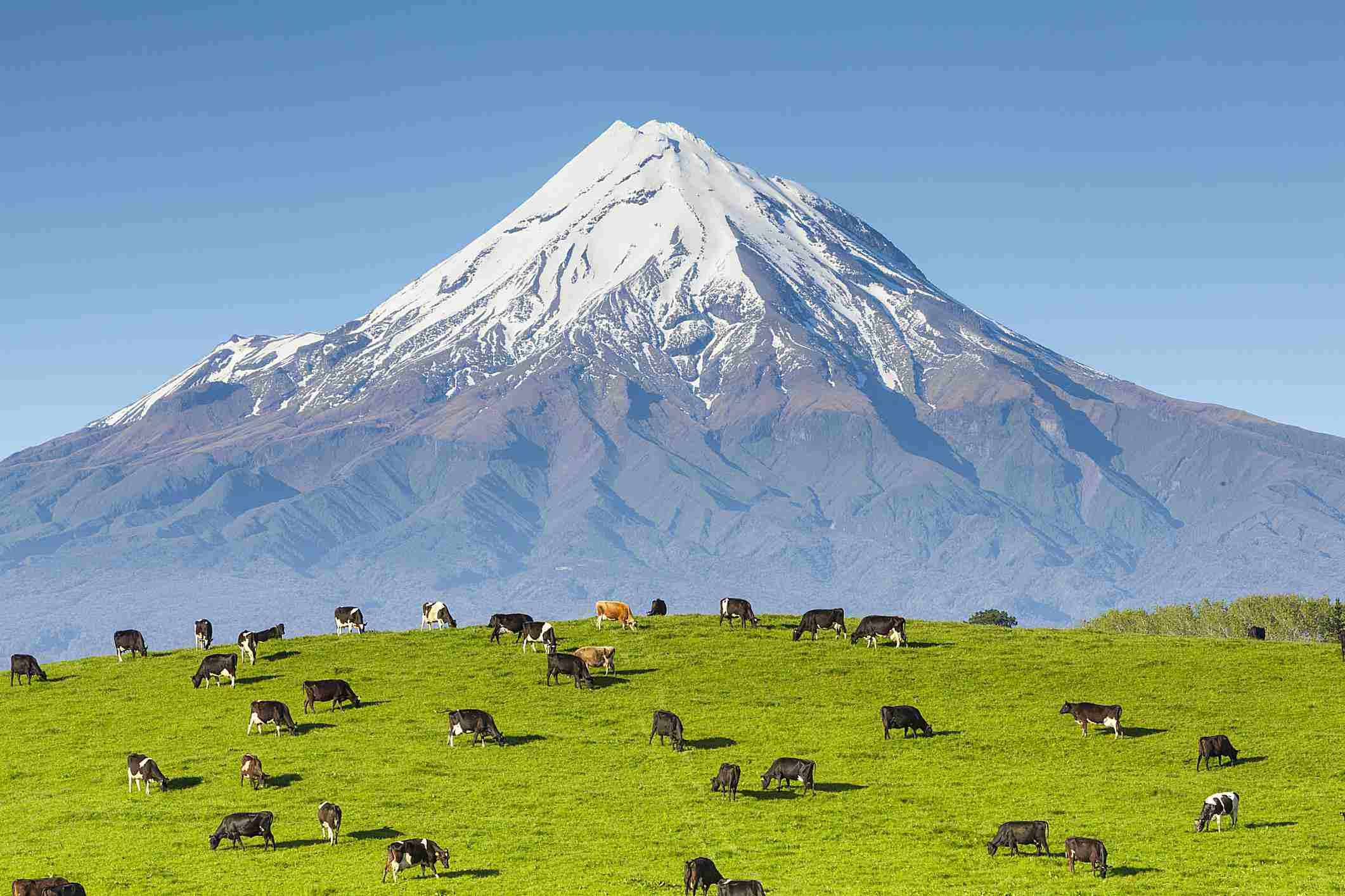 Nueva Zelanda también atrae a residentes por inversión