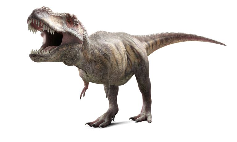 Digital illustration of T-Rex.